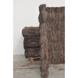 Bambou Brousaille