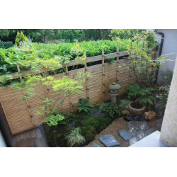 Tuteur en Bambou Naturel 244cm
