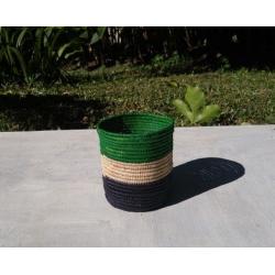 Raphia Vert